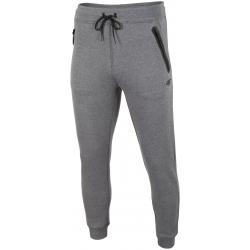 Pánske teplákové nohavice 4F-MENS TROUSERS SPMD004-24M-Grey dark
