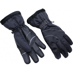 Dámské lyžařské rukavice BLIZZARD-Viva Harmonica ski gloves, black / silver