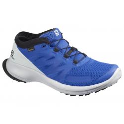 Pánska trailová obuv SALOMON-Sense Flow GTX lapis/pearl blue/black (EX)
