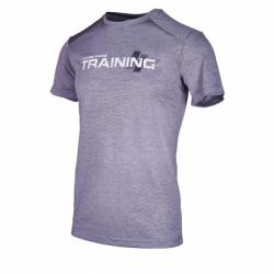 Pánske tréningové tričko s krátkym rukávom ANTA-SS Tee-852037113-2-Grey