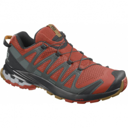 Pánska bežecká trailová obuv SALOMON-XA Pro 3D V8 rooibos tea/black/cumin
