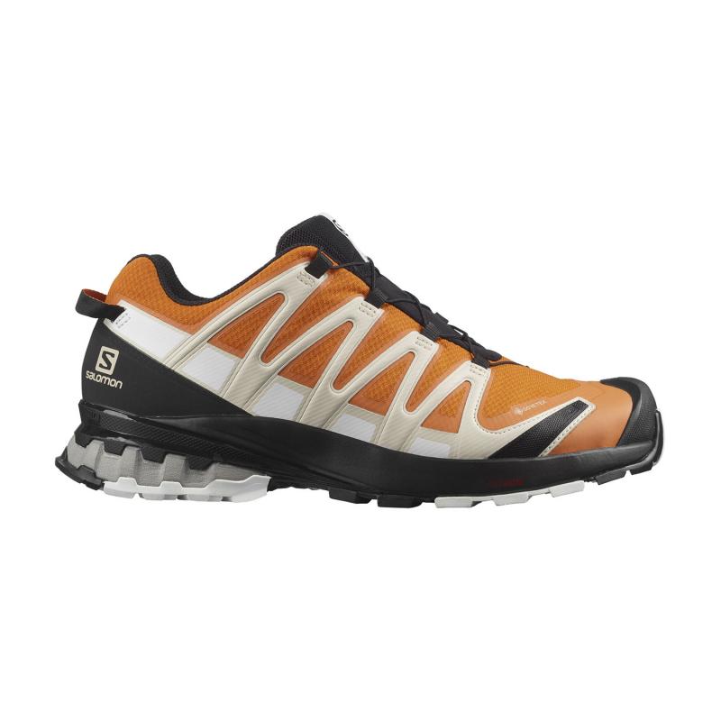 Pánska bežecká trailová obuv SALOMON-XA Pro 3D V8 GTX marmalade/rainy day/white -