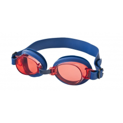 VISION ONE-Cars goggles