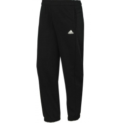 ADIDAS-ESS PANT CH FT