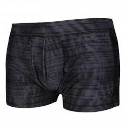 Pánske plavecké boxerky AUTHORITY-PLAREYS I