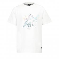 b91a22160a00 Pánske tričko s krátkym rukávom PICTURE-Polar S S MTS526-WHITE